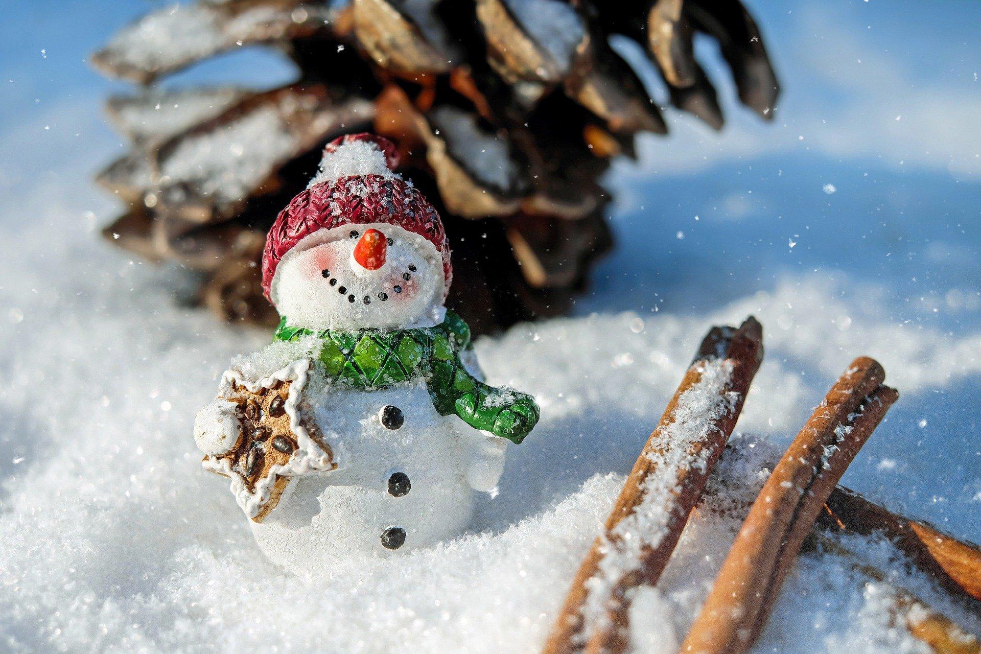 新雪より重くなるしまり雪の危険性とは?耐積雪等級について知ろう
